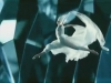 crystal-worlds-swarovski-imagefilm-ballet